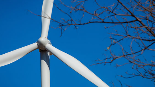 Te Interessa - Wind Power: Neoenergia answers 5 interesting points on the theme